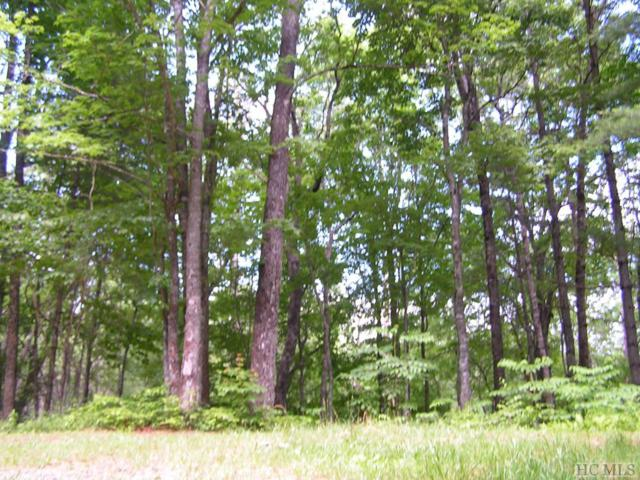 990 Found Forest Road, Cashiers, NC 28717 (MLS #88631) :: Berkshire Hathaway HomeServices Meadows Mountain Realty
