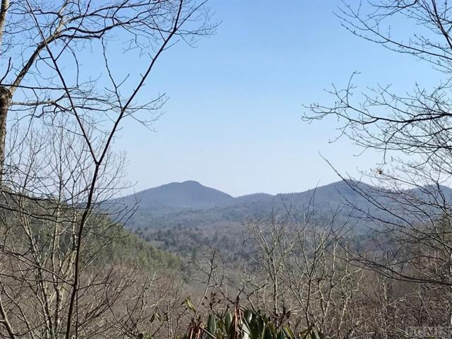 Lot 18 Spike Moss Road, Sapphire, NC 28774 (MLS #88702) :: Berkshire Hathaway HomeServices Meadows Mountain Realty