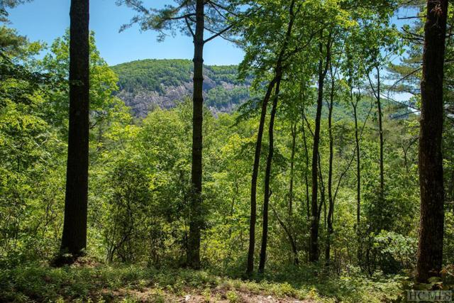 Lot 110 Lonesome Valley Rd, Sapphire, NC 28774 (MLS #88720) :: Berkshire Hathaway HomeServices Meadows Mountain Realty