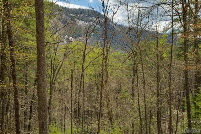 Lot 134 Lonesome Valley Rd, Sapphire, NC 28774 (MLS #88724) :: Berkshire Hathaway HomeServices Meadows Mountain Realty