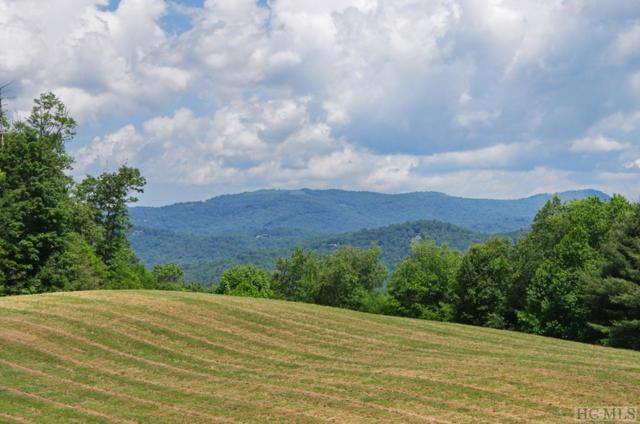 672 Windover Drive, Cullowhee, NC 28723 (MLS #88803) :: Berkshire Hathaway HomeServices Meadows Mountain Realty