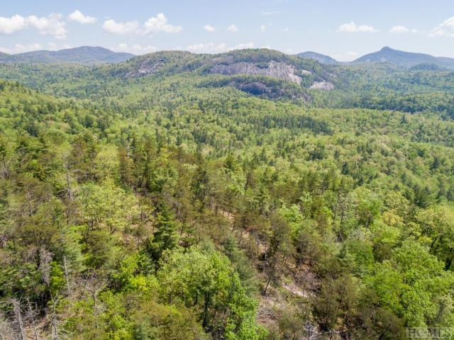 679 Peregrine Trail, Cashiers, NC 28717 (MLS #88922) :: Berkshire Hathaway HomeServices Meadows Mountain Realty