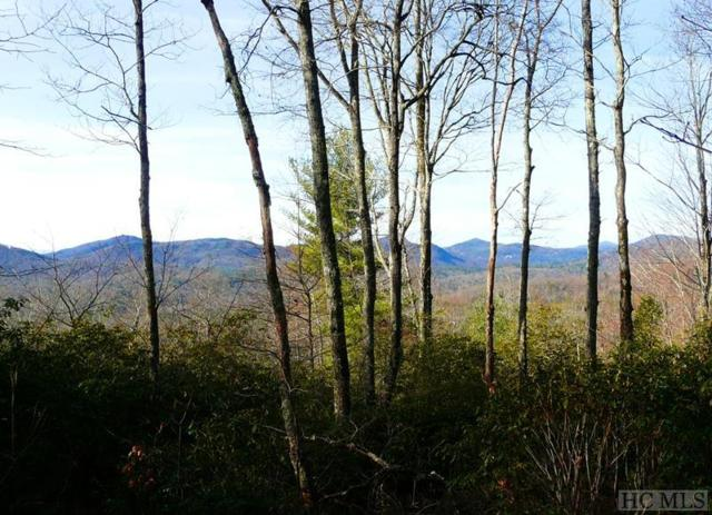 Camp 5 Eagle Drive, Sapphire, NC 28774 (MLS #88952) :: Berkshire Hathaway HomeServices Meadows Mountain Realty