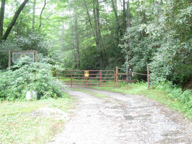 34 Grimshawe Blvd, Sapphire, NC 28774 (MLS #88966) :: Berkshire Hathaway HomeServices Meadows Mountain Realty