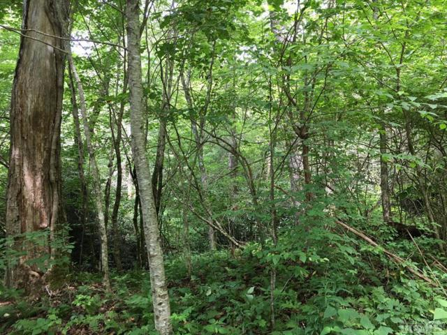 TBD Ravenel Lake Trail, Highlands, NC 28741 (MLS #88986) :: Lake Toxaway Realty Co