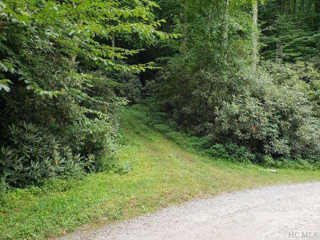 Lt 5 Andrews Park Road, Glenville, NC 28736 (MLS #88991) :: Berkshire Hathaway HomeServices Meadows Mountain Realty