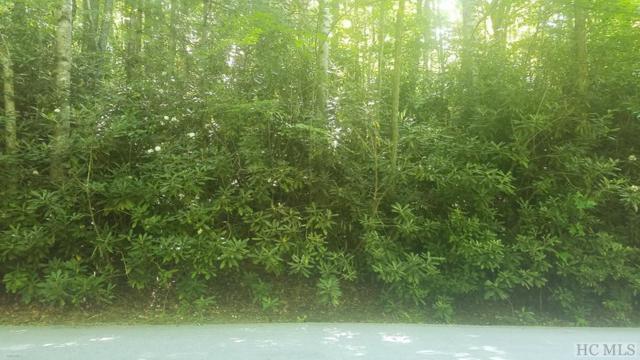 Lot 65 Black Oak Drive, Sapphire, NC 28774 (MLS #89016) :: Lake Toxaway Realty Co