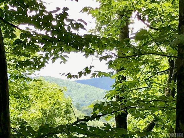 Lot 91 Hickory Drive, Sapphire, NC 28774 (MLS #89042) :: Lake Toxaway Realty Co