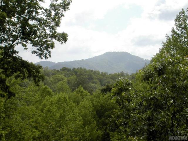 Lot 26 Cullowhee Forest Road, Cullowhee, NC 28735 (MLS #89084) :: Lake Toxaway Realty Co