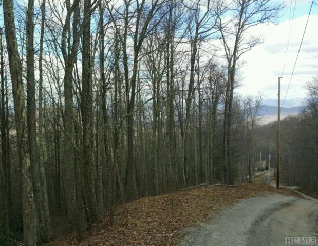 Lot #22 Nuthatch Drive, Cullowhee, NC 28723 (MLS #89089) :: Berkshire Hathaway HomeServices Meadows Mountain Realty