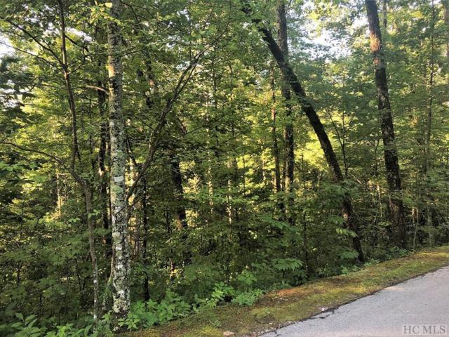 E-102 Shortleaf Pine Lane, Cashiers, NC 28717 (MLS #89152) :: Lake Toxaway Realty Co