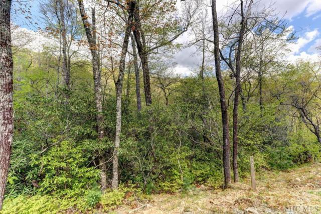 Lot D8 Boathouse Row, Cashiers, NC 28717 (MLS #89270) :: Berkshire Hathaway HomeServices Meadows Mountain Realty