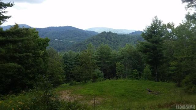 8/9 Spring Meadow Lane, Glenville, NC 28736 (MLS #89275) :: Berkshire Hathaway HomeServices Meadows Mountain Realty