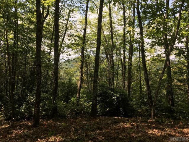 Lot 32 Stone Chimney Road, Sapphire, NC 28774 (MLS #89292) :: Lake Toxaway Realty Co