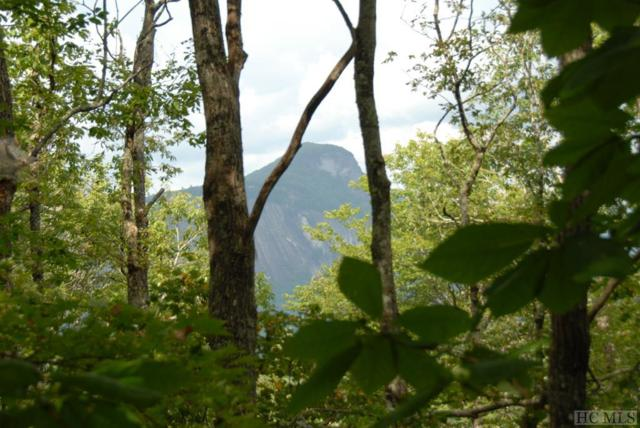 TBD Sagee Woods Drive, Highlands, NC 28741 (MLS #89316) :: Lake Toxaway Realty Co