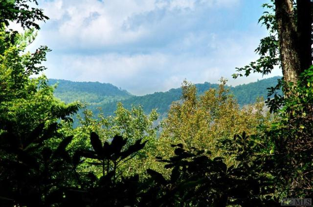 Lot 40 Loblolly Lane, Cashiers, NC 28717 (MLS #89352) :: Berkshire Hathaway HomeServices Meadows Mountain Realty