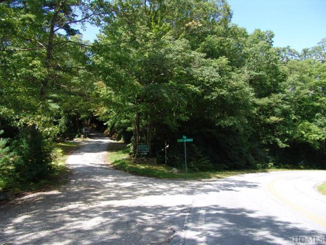 TBD Little Elbow Mountain Road, Lake Toxaway, NC 28747 (MLS #89355) :: Berkshire Hathaway HomeServices Meadows Mountain Realty