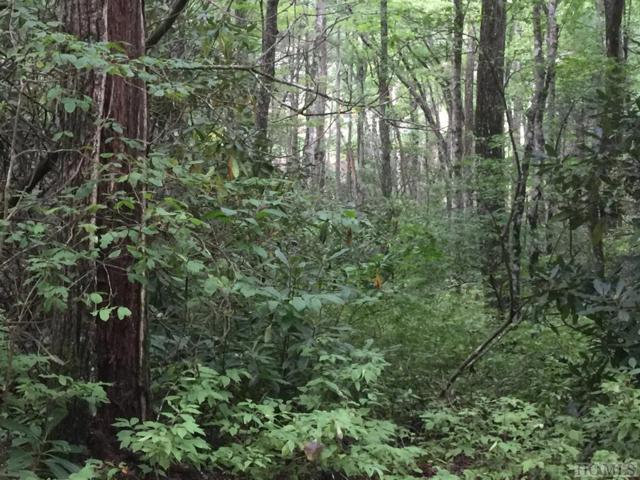 Lot 22 Eastern Summit Road, Cashiers, NC 28717 (MLS #89436) :: Berkshire Hathaway HomeServices Meadows Mountain Realty