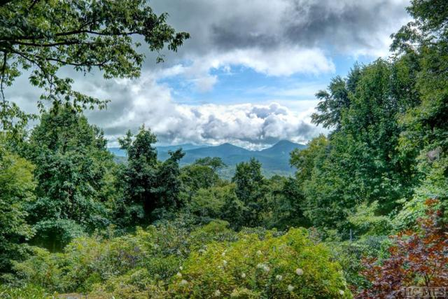 3826 Us Hwy 64, Highlands, NC 28741 (MLS #89583) :: Berkshire Hathaway HomeServices Meadows Mountain Realty