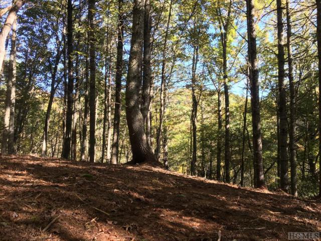 Lot 39C Ell Ridge, Glenville, NC 28736 (MLS #89643) :: Berkshire Hathaway HomeServices Meadows Mountain Realty