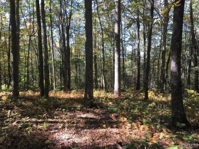 Lot 68D Rye Mountain Drive, Glenville, NC 28736 (MLS #89644) :: Berkshire Hathaway HomeServices Meadows Mountain Realty