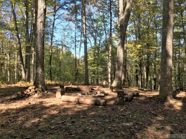 Lot 69D Rye Mountain Drive, Glenville, NC 28736 (MLS #89645) :: Berkshire Hathaway HomeServices Meadows Mountain Realty