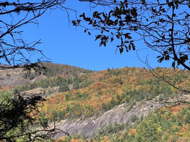 Pt Tr C Ruffed Grouse Road, Glenville, NC 28736 (MLS #89686) :: Lake Toxaway Realty Co
