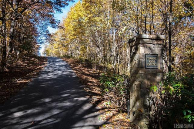 37 Thomas Knob Trail, Scaly Mountain, NC 28775 (MLS #89749) :: Pat Allen Realty Group