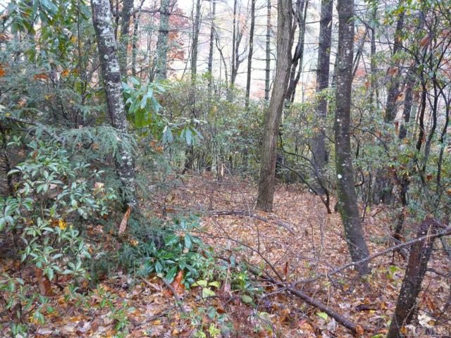 Lot 30 Lucy Lane, Lake Toxaway, NC 28747 (MLS #89775) :: Berkshire Hathaway HomeServices Meadows Mountain Realty