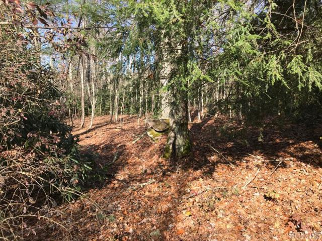 TBD Shelby Drive, Highlands, NC 28741 (MLS #89785) :: Pat Allen Realty Group