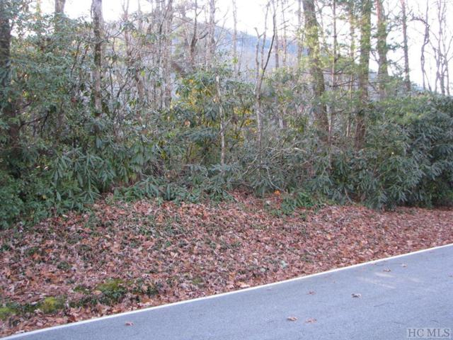 3 Cardinal Drive, Lake Toxaway, NC 28747 (MLS #89834) :: Landmark Realty Group