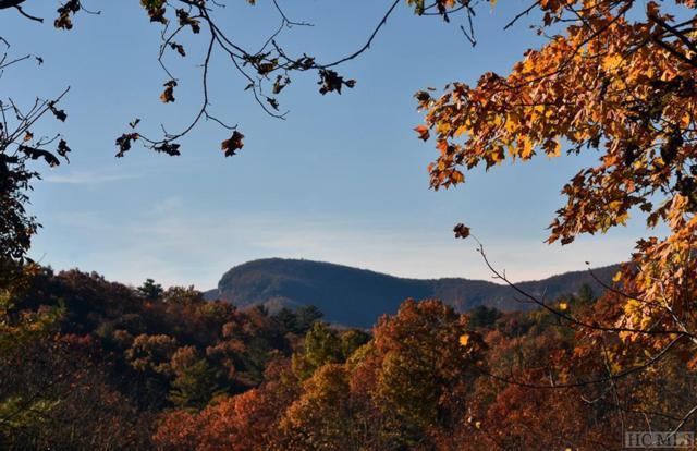 102 Gray Bank Road, Lake Toxaway, NC 28747 (MLS #89849) :: Berkshire Hathaway HomeServices Meadows Mountain Realty