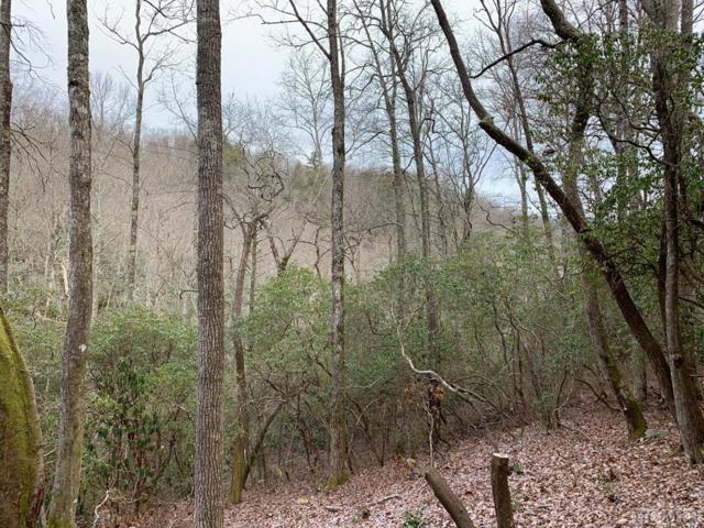 Lot D-6 Boathouse Row, Sapphire, NC 28774 (MLS #90042) :: Lake Toxaway Realty Co