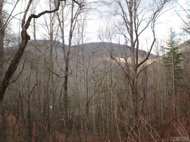 00 Daisy Lane, Highlands, NC 28741 (MLS #90121) :: Berkshire Hathaway HomeServices Meadows Mountain Realty