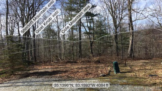Lot 9 Trillium Ridge Road, Cullowhee, NC 28723 (MLS #90124) :: Berkshire Hathaway HomeServices Meadows Mountain Realty