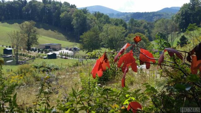 378 Pine Creek Road, Cullowhee, NC 28723 (MLS #90173) :: Berkshire Hathaway HomeServices Meadows Mountain Realty