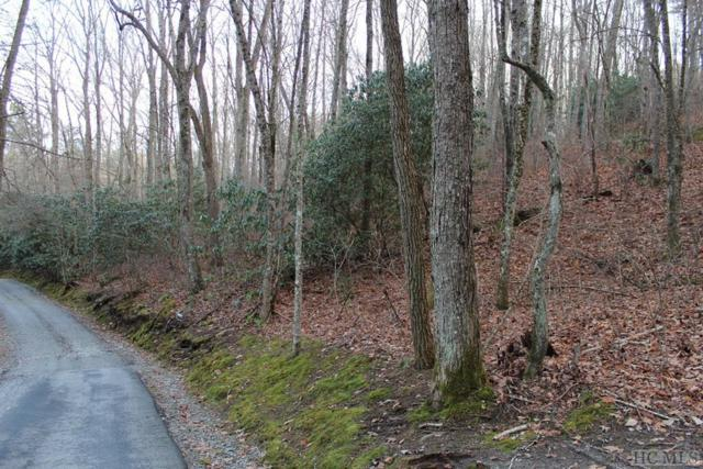 Lot 4 Silent Meadows Drive, Cullowhee, NC 28723 (MLS #90210) :: Berkshire Hathaway HomeServices Meadows Mountain Realty