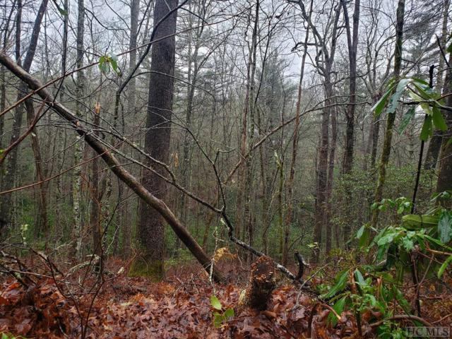 Lot 50 White Dogwood Court, Sapphire, NC 28774 (MLS #90242) :: Berkshire Hathaway HomeServices Meadows Mountain Realty