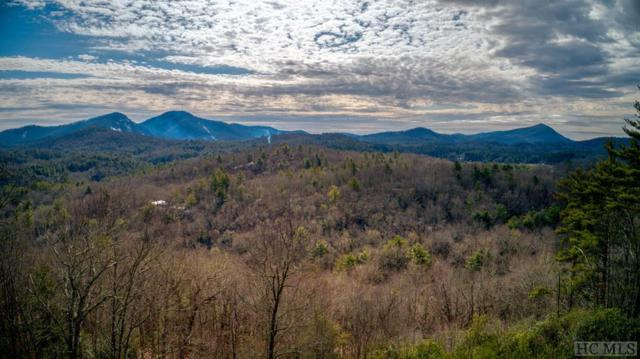 221 Dorset Horn Drive, Cashiers, NC 28717 (MLS #90268) :: Berkshire Hathaway HomeServices Meadows Mountain Realty