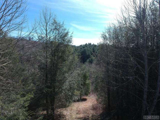 Lot 16 Trillium Ridge Road, Cullowhee, NC 28723 (MLS #90297) :: Berkshire Hathaway HomeServices Meadows Mountain Realty