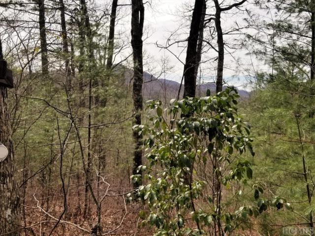 9 Shepherds Gap Road, Cullowhee, NC 28723 (MLS #90341) :: Berkshire Hathaway HomeServices Meadows Mountain Realty