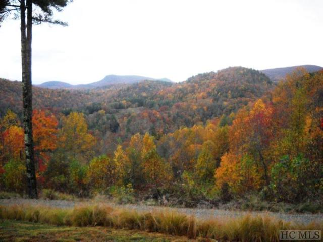 TBD North Norton Road, Cashiers, NC 28723 (MLS #90375) :: Berkshire Hathaway HomeServices Meadows Mountain Realty