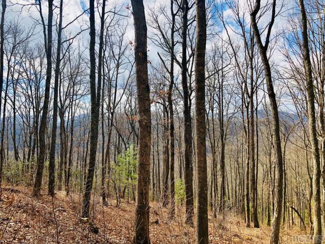 Lot 54 Beechfern Drive, Glenville, NC 28736 (MLS #90395) :: Berkshire Hathaway HomeServices Meadows Mountain Realty