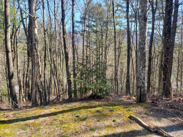 Lot 6 Home Lane, Sapphire, NC 28774 (MLS #90404) :: Berkshire Hathaway HomeServices Meadows Mountain Realty
