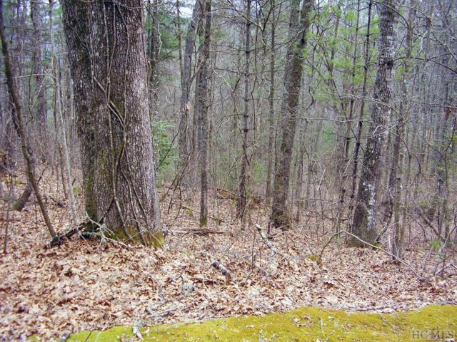 Lot 5 No End Circle, Cullowhee, NC 28723 (MLS #90420) :: Berkshire Hathaway HomeServices Meadows Mountain Realty