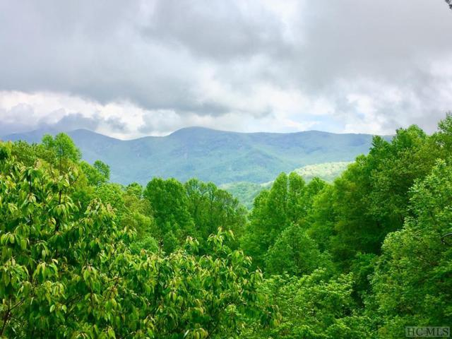 TBD Osage Lane, Scaly Mountain, NC 28775 (MLS #90452) :: Berkshire Hathaway HomeServices Meadows Mountain Realty