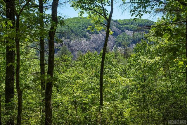 Lot 111 Lonesome Valley Rd, Sapphire, NC 28774 (MLS #90492) :: Berkshire Hathaway HomeServices Meadows Mountain Realty