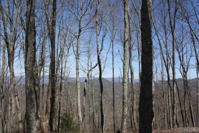 Lot 25 Blue Star Way, Glenville, NC 28736 (MLS #90494) :: Berkshire Hathaway HomeServices Meadows Mountain Realty