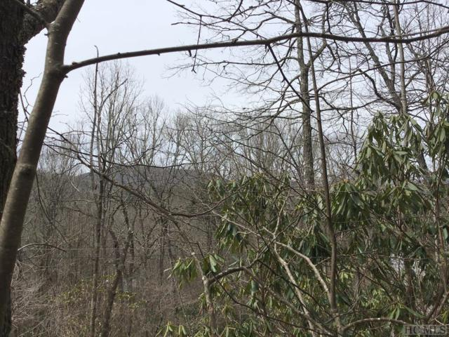 TBD Hill Road, Highlands, NC 28741 (MLS #90532) :: Pat Allen Realty Group
