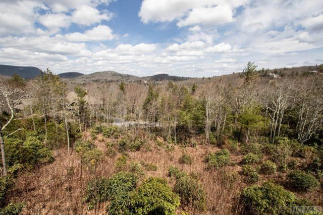 Lot 130 Garnet Rock Trail, Highlands, NC 28741 (MLS #90540) :: Landmark Realty Group